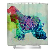Afghan Hound Watercolor Shower Curtain