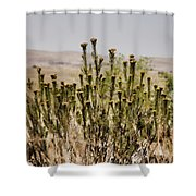 African Bushland Shower Curtain