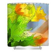 African Daisy I - Digital Paint Shower Curtain