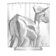 African Deer Drawing Shower Curtain