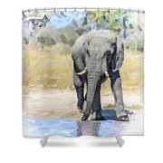 African Elephant At Waterhole Shower Curtain