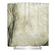 African Elephant Detail With Eye Shower Curtain