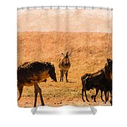 African Gathering Shower Curtain