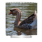 African Goose Shower Curtain