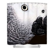 African Gray Parrot Art - Seeing Is Believing Shower Curtain