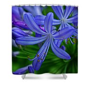 African Lily Shower Curtain
