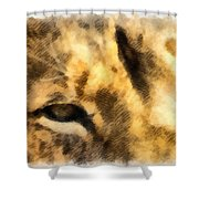 African Lion Eyes Shower Curtain