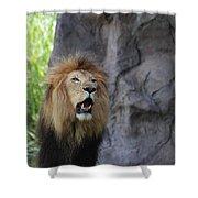 African Lion Roar Shower Curtain