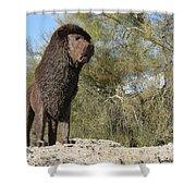 African Lion Sculpture Detail Shower Curtain