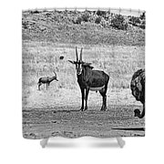 African Plains Shower Curtain