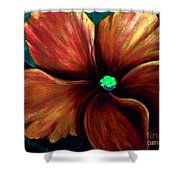 African Violet Golden Red Shower Curtain