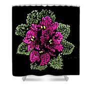 African Violets Bedazzled Shower Curtain