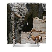 African Waterhole Shower Curtain
