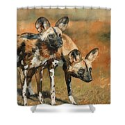 African Wild Dogs Shower Curtain