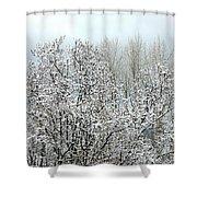 After A Light Snowfall Shower Curtain