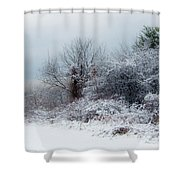 after Snow Storm Shower Curtain
