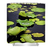 After The Rain- Gungarre Billabong V3 Shower Curtain