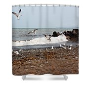 After The Spring Thaw Shower Curtain