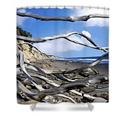 After The Storm Gaviota Shower Curtain