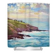 After The Storm Maui Shower Curtain