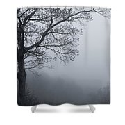 Afternoon Fog  Mono Shower Curtain