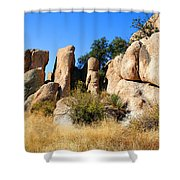Afternoon In The Canyon Shower Curtain