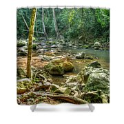 Afternoon In The Jungle Shower Curtain