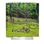 Afternoon In The Park With Friends Shower Curtain