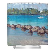 Afternoon Light Shower Curtain
