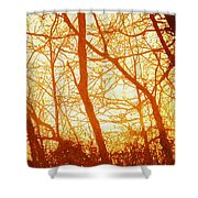 Afternoon Love  Shower Curtain