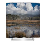 Afternoon Reflections Shower Curtain