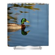 Afternoon Solitude Shower Curtain