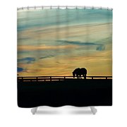 Against A Painted Sky Shower Curtain