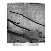 Against All The Odds Shower Curtain