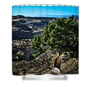 Against The Odds Shower Curtain