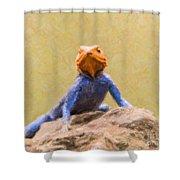Agama Lizard On Rock Shower Curtain