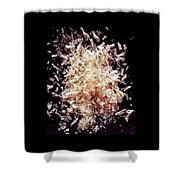 Agar Shower Curtain by Romulo Yanes