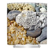 Agate Rock Garden Design Art Prints Coral Petrified Wood Shower Curtain by Baslee Troutman