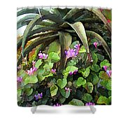 Agave And African Violets Shower Curtain