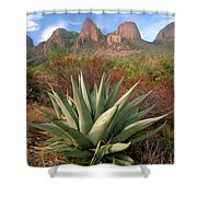 Agave And The Chisos Mountains Shower Curtain