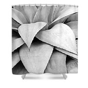 Agave Detail Shower Curtain