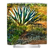 Agave In Secret Mountain Wilderness West Of Sedona Shower Curtain