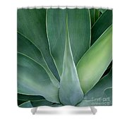 Agave No 1 Shower Curtain