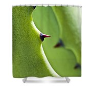 Agave Study Shower Curtain