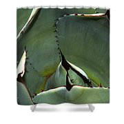 Agave Up Close Shower Curtain