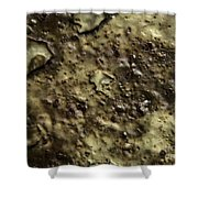 Aged Abstract Shower Curtain