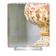 Aged Curves Shower Curtain