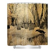 Aged Infrared Shower Curtain