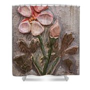 Aged Pink Beauty Shower Curtain