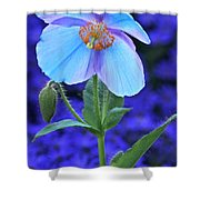 Aglow In Blue Tall View Shower Curtain